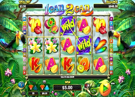 Nextgen Gaming 1Can 2Can low variance New Zealand pokie